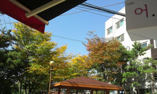 청명한 하늘 아래, 'cafe 어.'