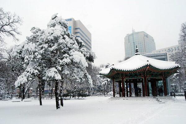 (2010년) 1월 4일 중부지방 폭설로 뒤덮인 서울의 탑골공원. (CC BY-SA 2.0)