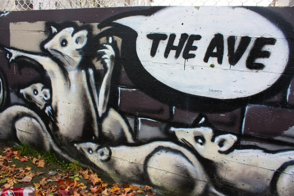 jeck_crow-Ave-Rat-CC-BY_NC_ND http://www.flickr.com/photos/jeckcrow/5221390065/sizes/z/in/photostream/