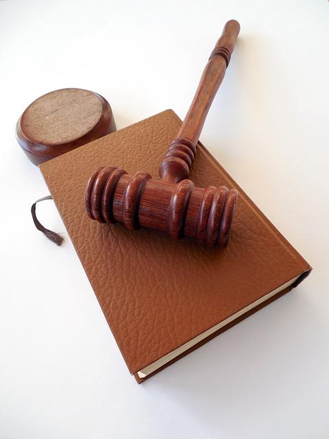 법 퍼블릭도메인