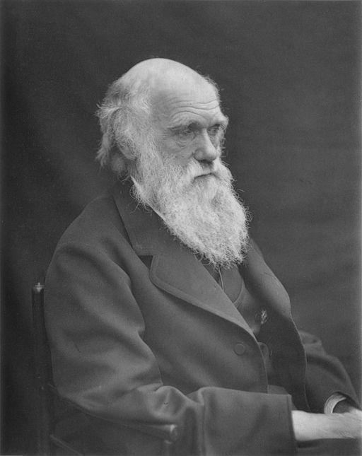 찰스 다윈 (출처: Leonard Darwin, 1884)