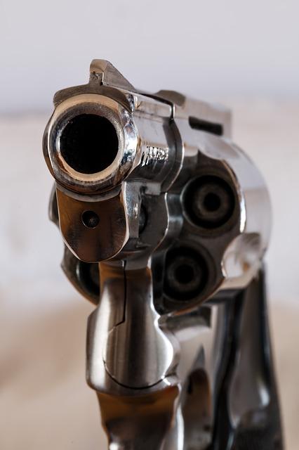 권총 폭력