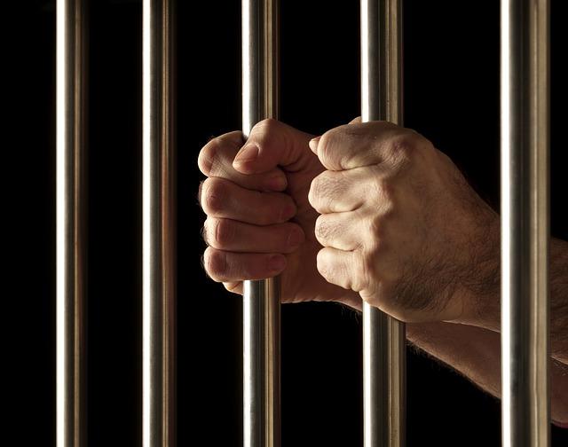 판결 피고 법정 법원 변호