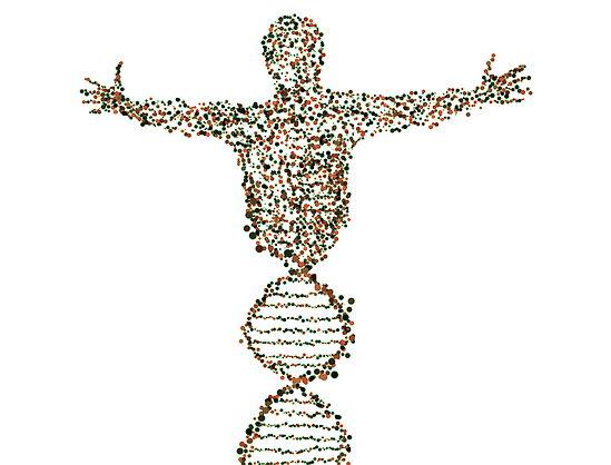 유전공학 인간