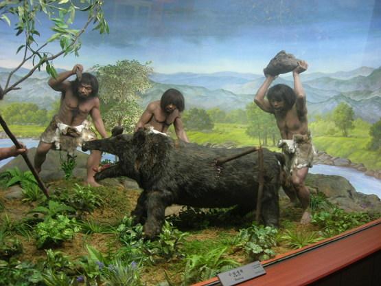 인간은 먹이 채집 활동을 잘 못하는 동물이었다고?