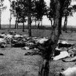 아르메니아인 집단학살