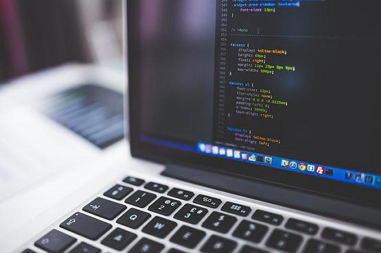개발자 프로그래머 코딩