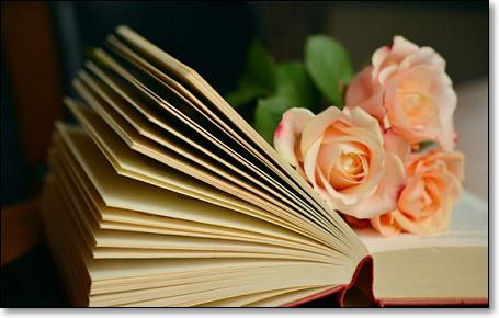 종이책의 물질감이 가져다주는 기쁨은 마약 같다.