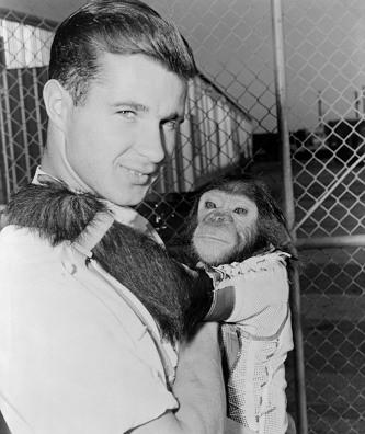 1961년 11월 29일 '머큐리 아틀라스 로켓'을 타고 지구를 공전한 최초의 침팬지 이노스. 사진은 사육사와 함께 한 이노스의 모습(1961년 1월 1일, 퍼블릭 도메인).