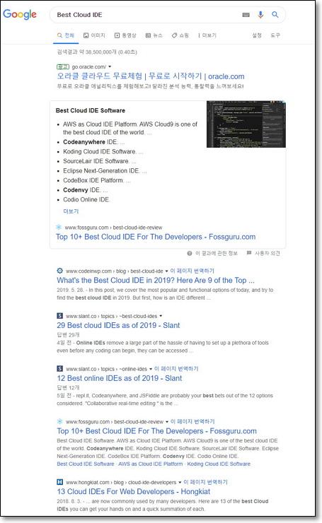 """구글에서 """"Best Cloud IDE""""로 검색한 화면"""