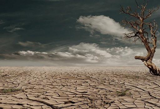 가뭄 사막 비