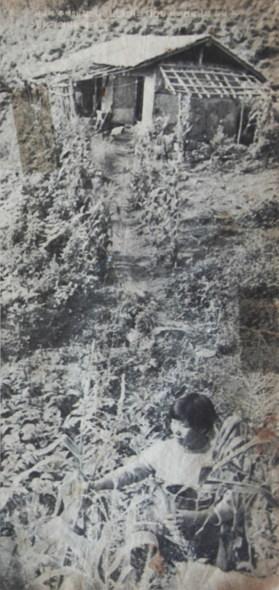 태기리 화전농
