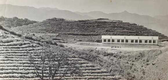 태기분교와 계단식 밭